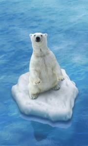 Føtex' dyrekort kampagne